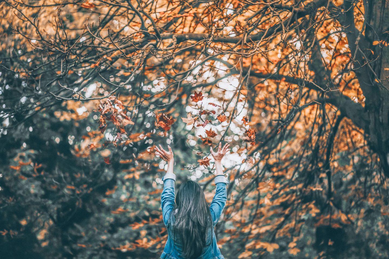Gründe sich auf den Herbst zu freuen