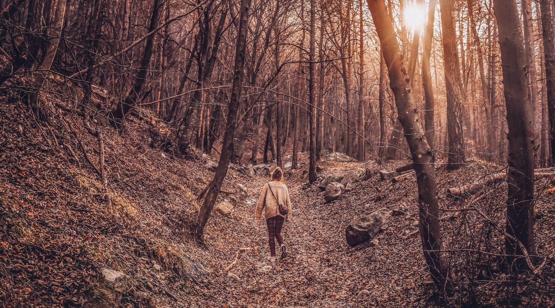 Herbstspaziergang, Frau im bunten Wald