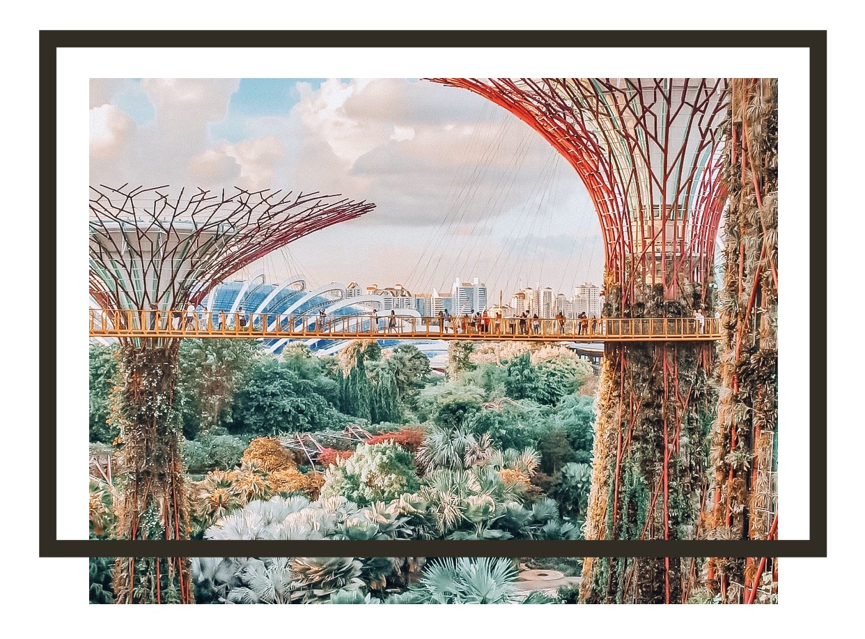 Gardens by the bay - Singapore, solo female travelers, alleinreisende Frauen